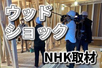 ウッドショック NHK